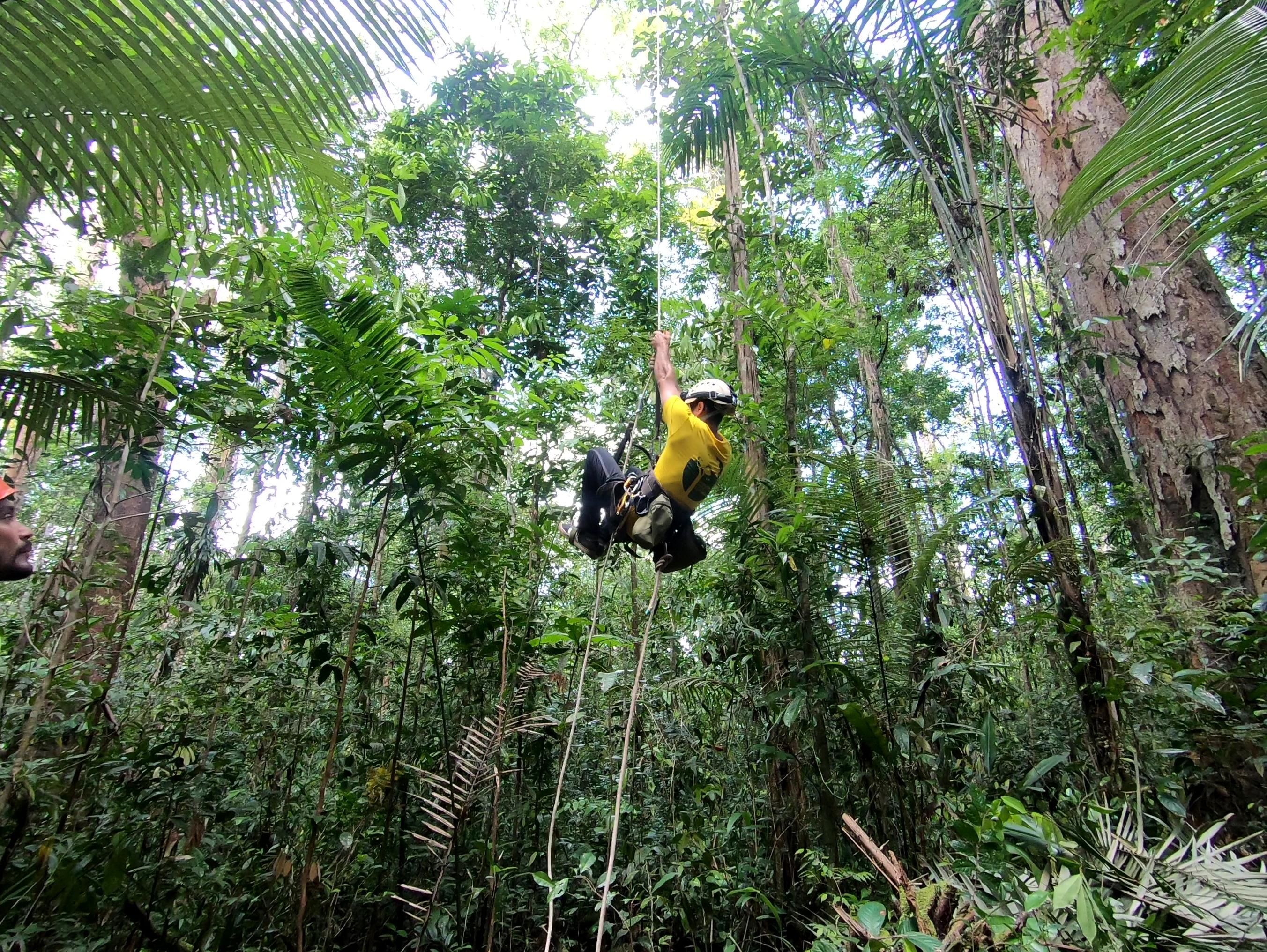 Jari tall tree trip - Fabiano_climbing_Toby Jackson